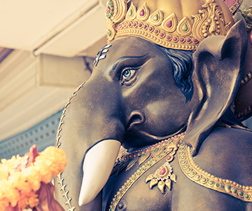 Dr. Pillai on Solutions from Ganesha