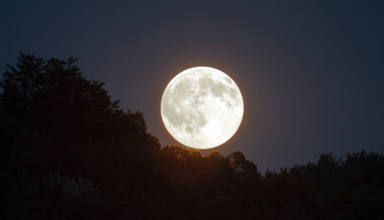 Father's Day Full Moon for Prosperity