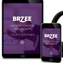 Brzee Meditation for Prosperity