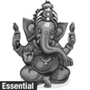 Ganesha Essential Ritual Package